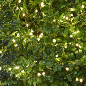 Guirlande électrique indoor outdoor Sirius Knirke Green 16m soit 160 leds Fil vert